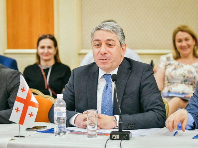 Ассоциация делового сотрудничества ГУАМ, Грузия