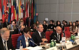 Генеральный секретарь ГУАМ выступил на Постоянном Совете ОБСЕ