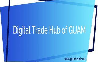 Виртуальный торговый узел ГУАМ